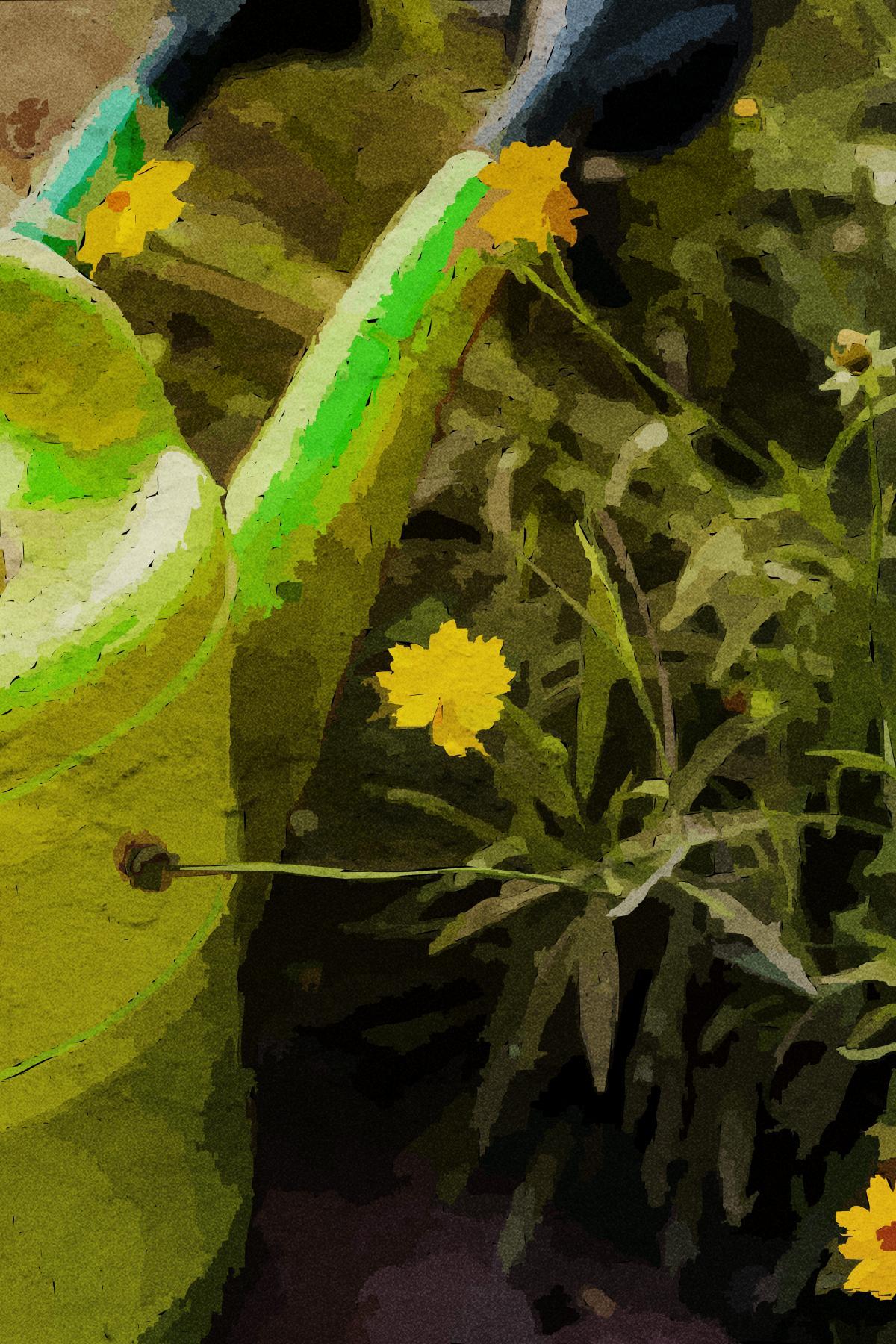 Spring Pest Control Solutions - Humboldt Termite & Pest