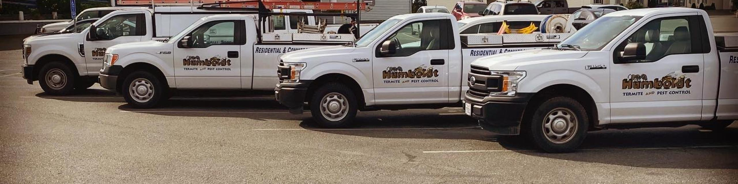 Humboldt and Del Norte County pest control solutions